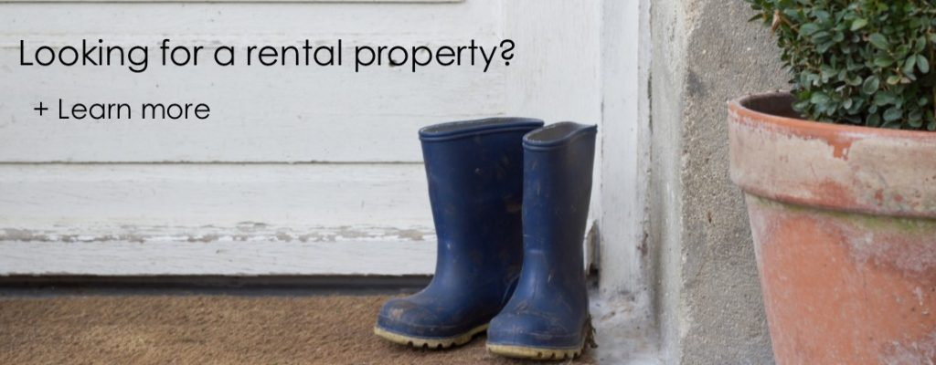 What to look for in a rental property